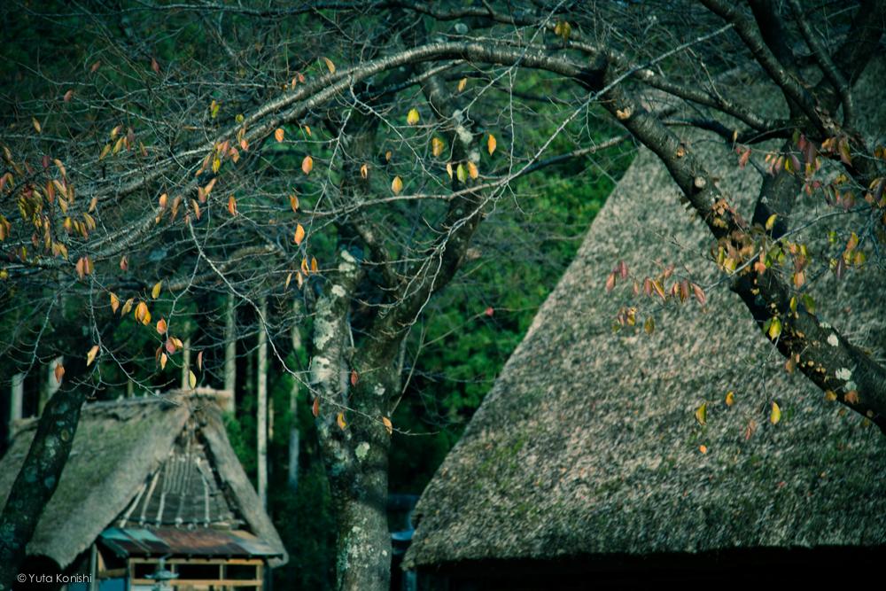 世界遺産五箇山 日本昔ばなしの世界そのまま