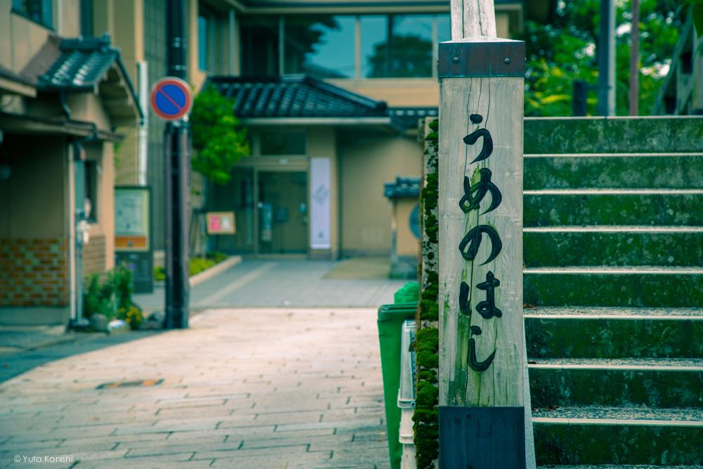 ひがし茶屋近くの梅ノ橋(婚礼撮影)