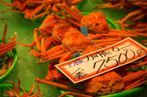 カニ!金沢グルメの王様「加能ガニ」11月上旬はカニ解禁で金沢近江町市場の活気が最高潮!行くしか無いだろ!