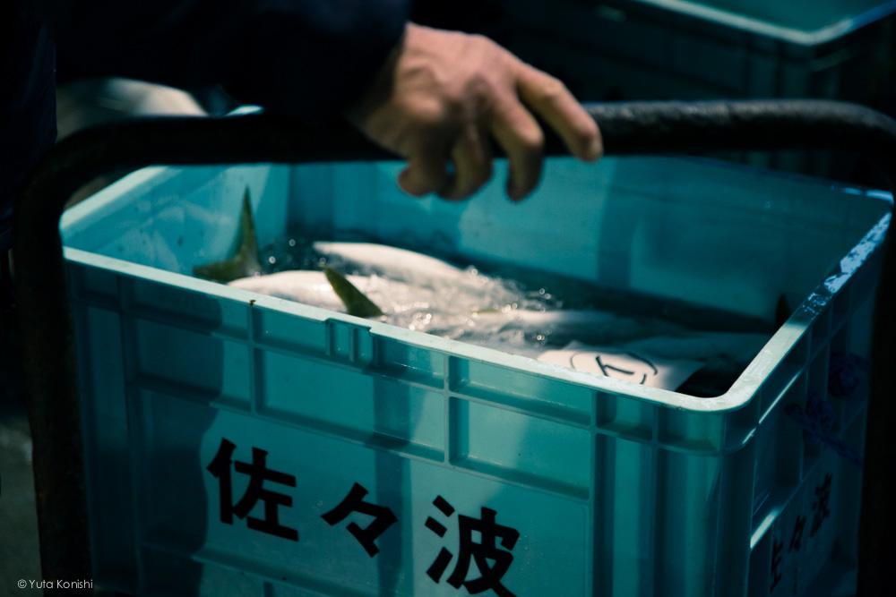 もはや「ぶりの聖地」氷見!聖地の寒ぶりはそろそろ「ぶりラッシュ」富山氷見で寒ぶりを食べずとして死ねない!