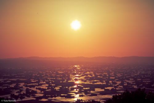 北陸が世界に誇れる絶景の田園風景「富山県 砺波平野の散居村」もうカメラマンの聖地でいいじゃん?!5月〜6月上旬が見頃